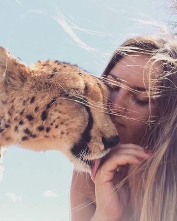Этого детеныша гепарда спасла от браконьеров неравнодушная девушка