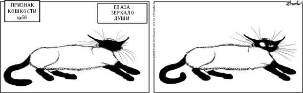 Признаки кошкости: 20 лет самому крутому комиксу о котиках