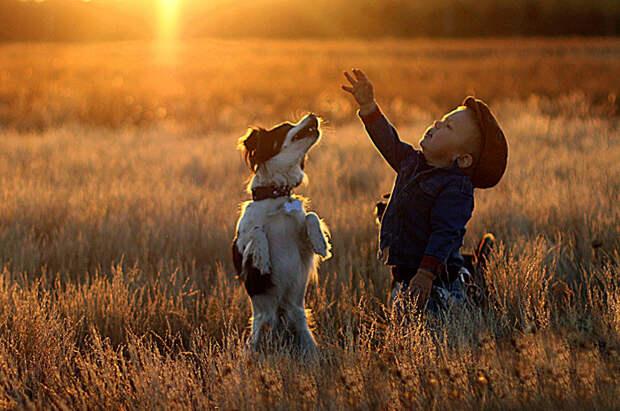 У того, кто сказал, что лучшие друзья девушки - это бриллианты, никогда не было собаки дети, животные, фотография
