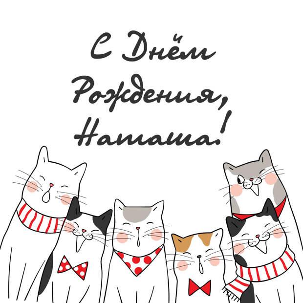 Открытка с днем рождения Наташа с котами