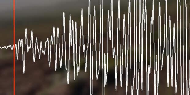 У берегов Новой Зеландии зафиксировали землетрясение магнитудой 8,0