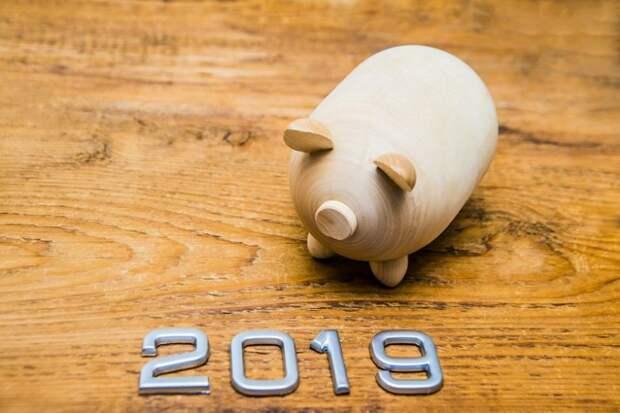Чего ждать от года Желтой Земляной Свиньи?