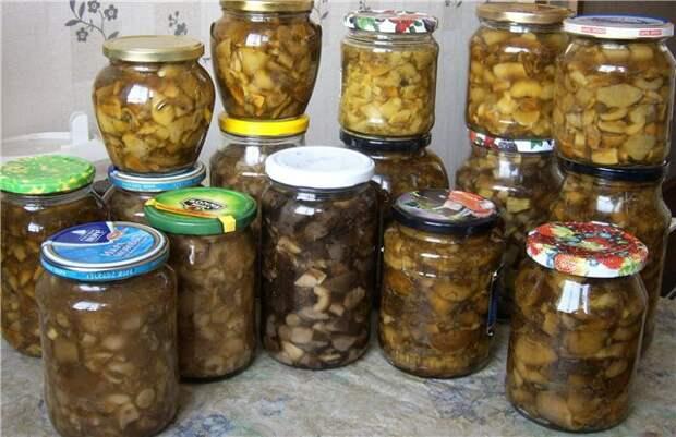 Маринованные грибочки вкусно, еда