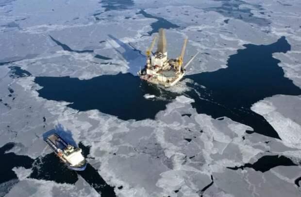 Шельф Арктика