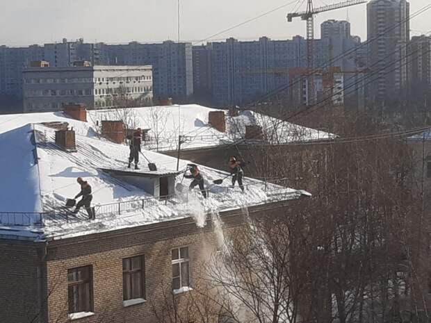 На Дмитровском шоссе заметили бесстрашных коммунальщиков