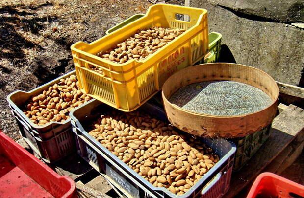 Как на Кипре делают сладости. Джукджук