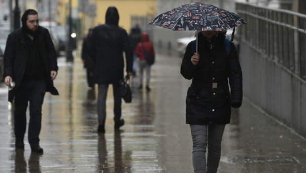 Жителей Подмосковья предупредили о ливне и порывистом ветре с 12 по 14 октября