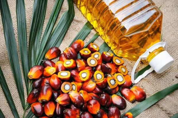Пальмовое масло не запрещено использовать, а потому его повсеместно добавляют / Фото: apk-inform.com