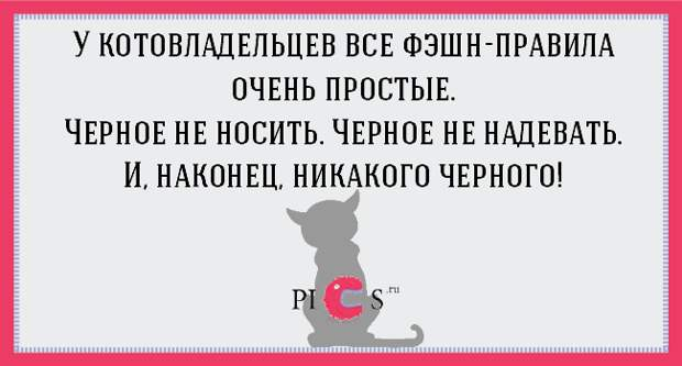 catowner09