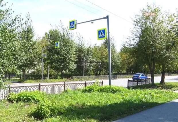 В Ачинске планируют потратить свыше 1 млн рублей на посадку деревьев и кустарников
