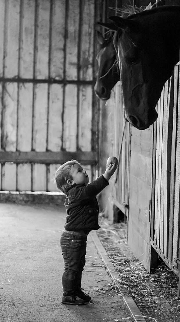 Моменты счастливого детства  дети, животные, фотография