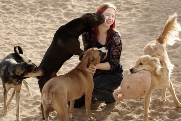Игра с собаками — осознанность