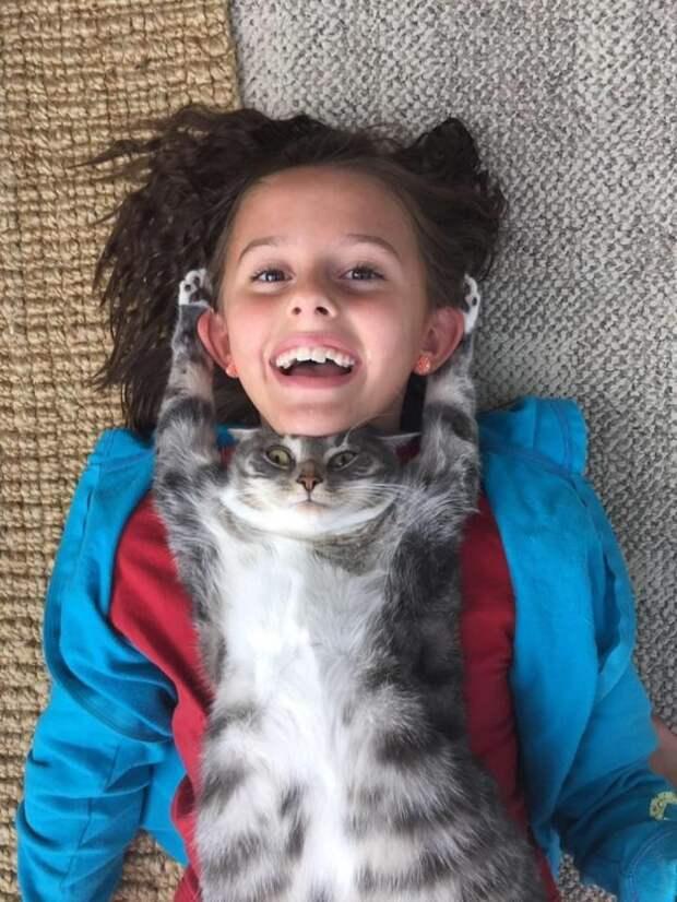 18. Этот кот просто прилип к девочке год, кот, событие