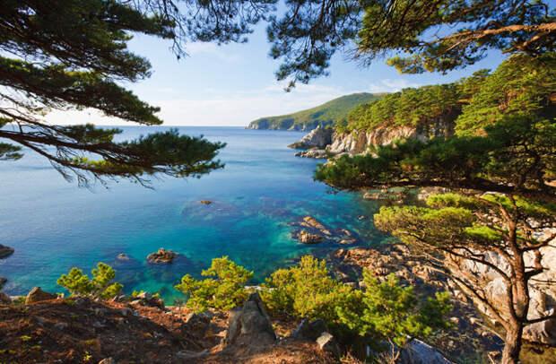 Природа Владивостока