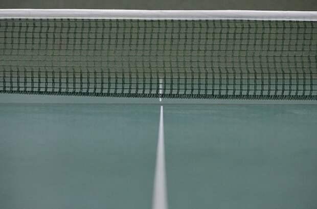 Теннис/ Фото pixabay.com