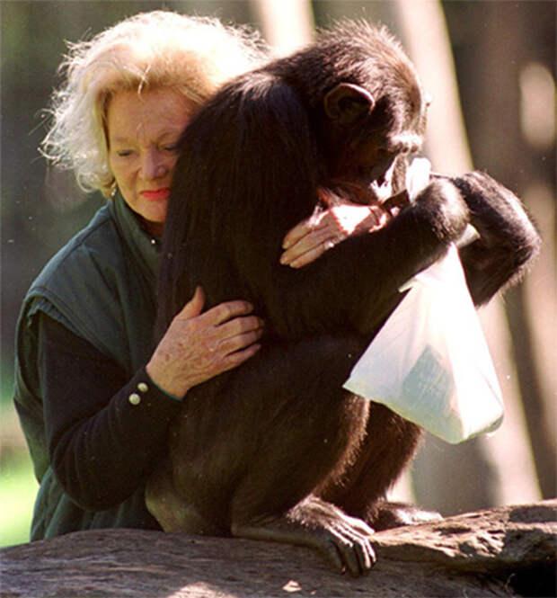 Милые и богатые: самые состоятельные домашние животные