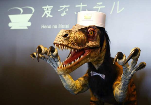 10 шокирующих фотографий, доказывающих, что Япония — самое странное государство в мире