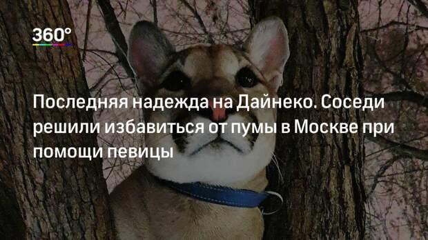 Последняя надежда на Дайнеко. Соседи решили избавиться от пумы в Москве при помощи певицы