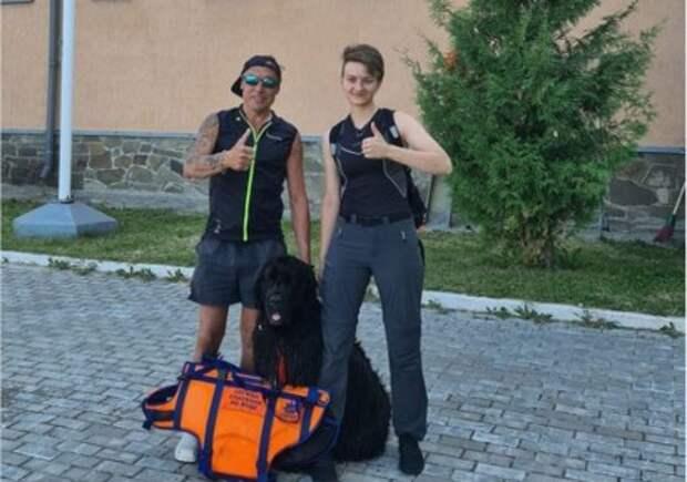 Ньюфаундленд Абигайль спасла жизнь купальщика в Строгинском заливе