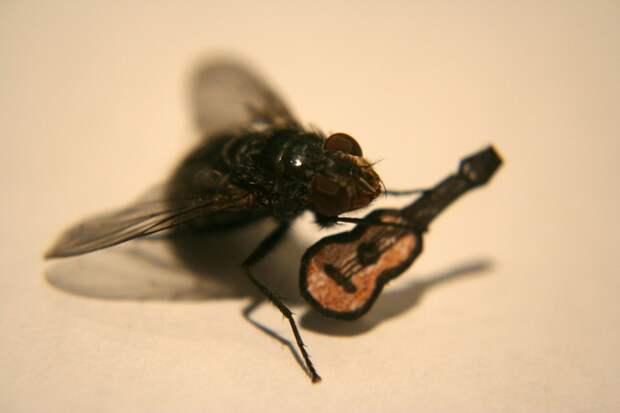 Слухи от «мухи». ПОГОВОРИМ?!