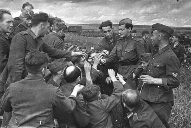 Как немцы обращались с пленными офицерами
