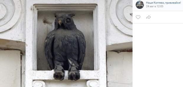 Фото дня: сова украшает дом у «Лихоборов»