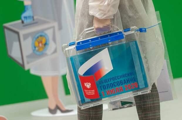 Конституция, выборы и пандемия: эксперты подвели политические итоги года