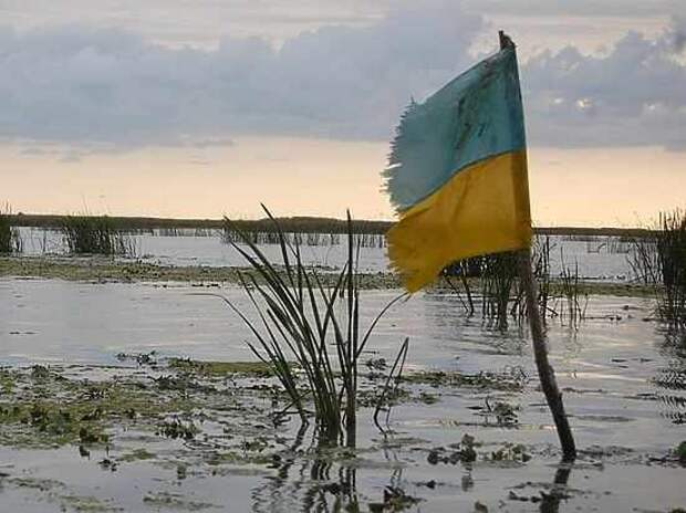 Юрий Селиванов: Кто там воет на болоте?