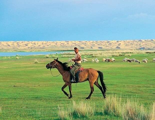 Классический пейзаж Тывы: чабан на лошадке местной породы. Вдалеке озеро Торе-Холь, а пески на том берегу – начало знаменитой пустыни Гоби. Вечером того же дня на телефон прилетела СМС: Welcome to Mongolia.