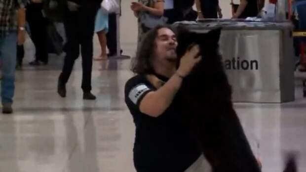 Пассажиры аэропорта были расчуствованны до слез, когда увидели встречу хозяина с псом