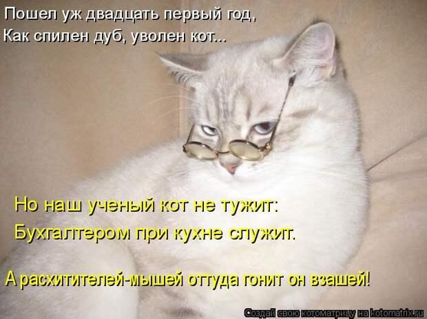 Котоматрица: Пошел уж двадцать первый год, Как спилен дуб, уволен кот... Но наш ученый кот не тужит: Бухгалтером при кухне служит. А расхитителей-мышей отт
