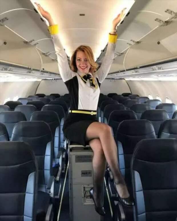 Ножки стюардесс. Подборка chert-poberi-styuardessy-chert-poberi-styuardessy-54320504012021-5 картинка chert-poberi-styuardessy-54320504012021-5