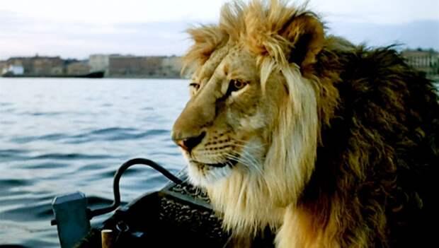 ТЕСТ: Вспомните, из какого фильма животное!