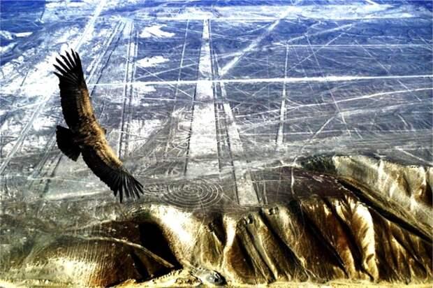 Установлена причина гибели цивилизации Наска