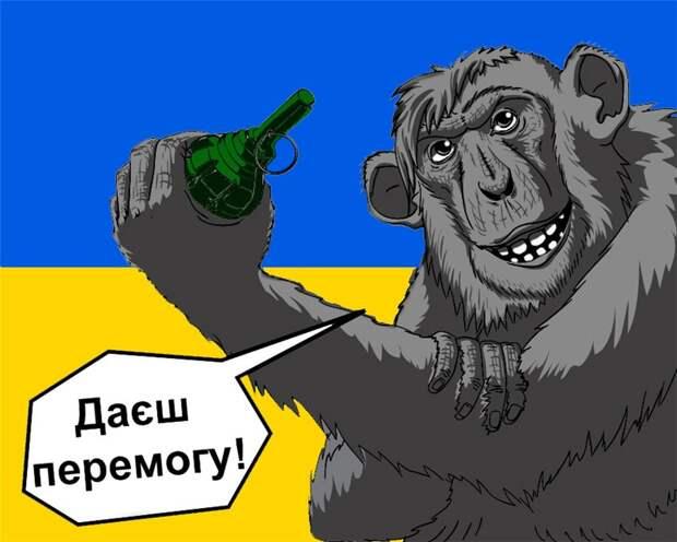 Украина пытается заняться политическим шантажом