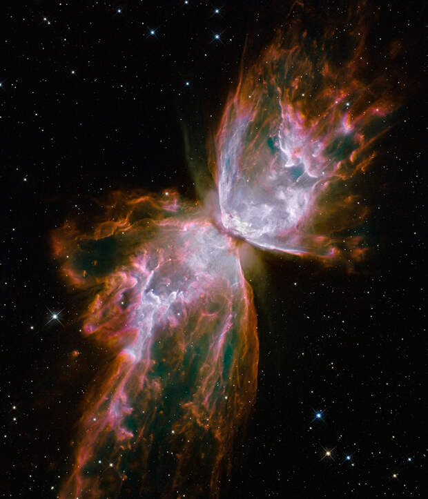 Butterfly emerges from stellar demise in planetary nebula NGC 63