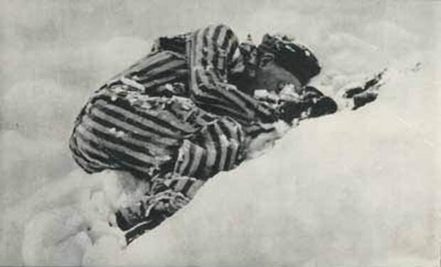 Вперед! За Родину! Побег Русских смертников из концлагеря Маутхаузен.