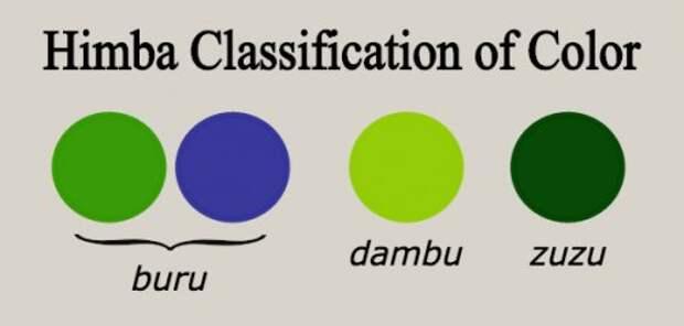 ТОП-10: Факты о цветах, в которых мы все ошибаемся
