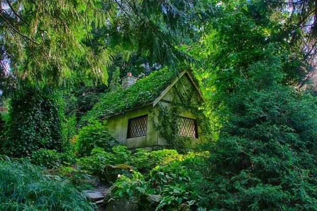 Дома для настоящих отшельников