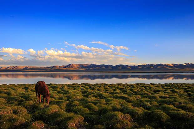 Конное путешествие по горам в Киргизии
