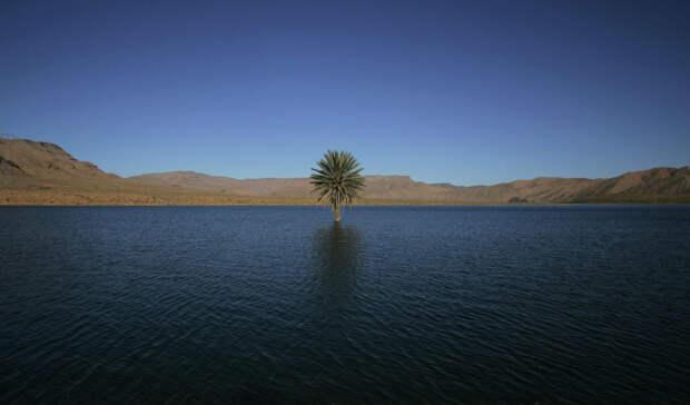Сахара 5000 лет назад: мир без песка