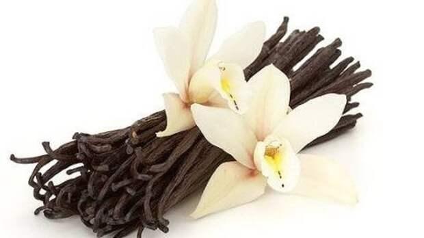 Ваниль и ее производные: как приготовить ванильный сахар