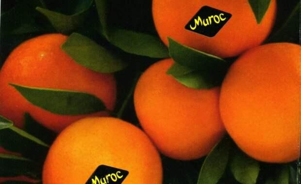 Наклейки на овощах и фруктах: о чем вы не знали