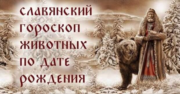 Snimok-ekrana-2017-02-09-v-10.27.53
