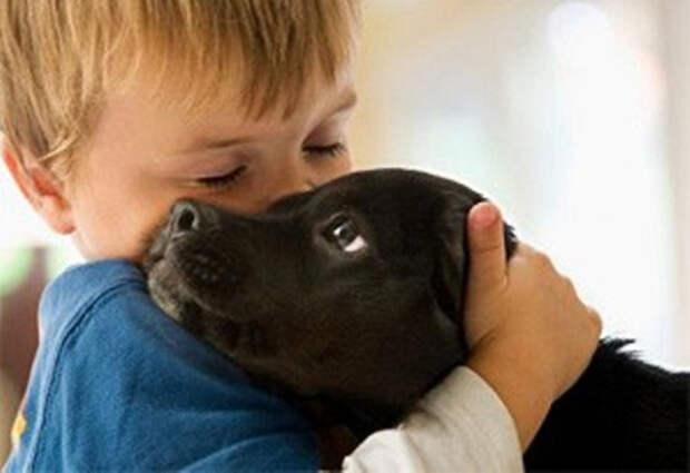 12 причин, почему каждый ребенок должен расти с собакой