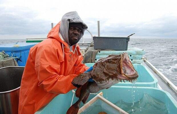 6. Европейские удильщики Опасно для жизни, морская фауна, рыбалка, рыбы