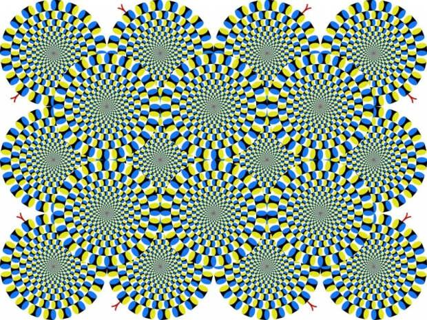 Странная оптическая иллюзия, которая обманет ваш мозг за 15 секунд
