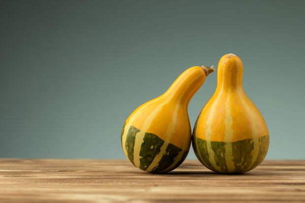 Грушевидные плоды сорта Kleine Bicolor