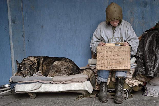 27. Бездомные в Нью-Йорке  бездомный, любовь, собака