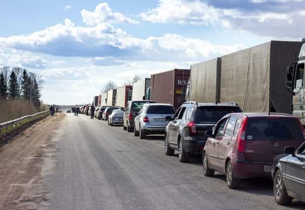 Не прошли проверку контроля - Россия развернула 20 тонн мороженой сельди обратно в Латвию